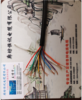 KFV KFVP耐高温电缆 KFF KFFRP 氟塑料控制电缆 KFVP KFF