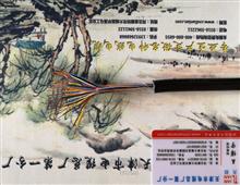 市话通信电缆ZRC-HYA53