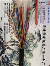 ZR-HYVP屏蔽通信电缆