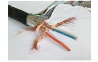 DJYPV22 钢带铠装计算机电缆