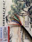 铜带屏蔽控制电缆KVVP2-14*0.5