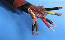 阻燃计算机电缆ZR-DJYVP22...