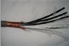 RYVSP22铠装双绞屏蔽电缆关于价格