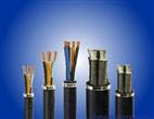 钢丝铠装矿用控制电缆MKVV32