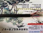 屏蔽通信电缆-HYAP