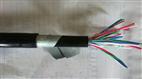 铁路普通信号电缆PTYAH23-61芯