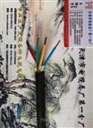 耐高温耐火控制电缆NH-KFFP2-22