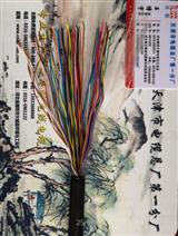 市内通信电缆HYAC系列