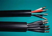 MKVV22矿用控制电缆实物大