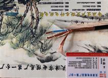 信号电缆ZR-KYJVP