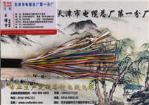ZRC-HYA23阻燃通讯电缆