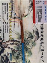 MHYAV金矿用通信电缆