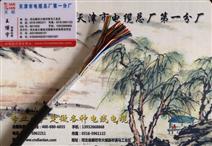 铜芯屏蔽电缆HYAP23 2×2.5...