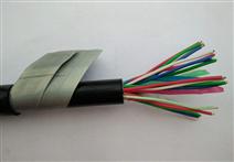 铁路信号电缆PTYAH22-61芯...