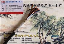 HYAT 实芯填充型通信电缆
