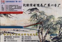 MHYA32 100*2*0.8-矿用通