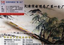 铠装充气电缆HYA53