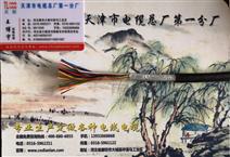 通信电缆HYV22