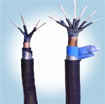 铠装信号电缆PVV22