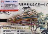 ZRC-HYVP22 大对数通信电缆