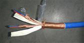 计算机铠装电缆DJYVP22 产品新闻
