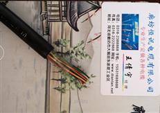 HYA22-30*2*0.6 铠装通信电缆