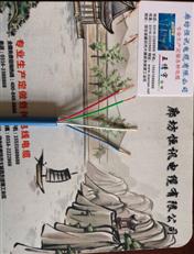 传感器电缆MHYVR1*2*0.75