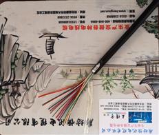 ZR-HYV市话阻燃通信电缆