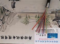 HYAT5×2×1.0充油通信电缆