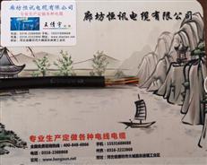 HYAC自称式钢丝电话线
