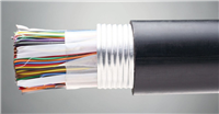 耐高温计算机电缆-DJFVP-22