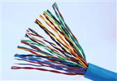 铁路信号电缆PTYA22 61芯