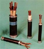 YCW YZW橡套电缆