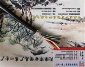 WDZ-HYA低烟无卤通信电缆
