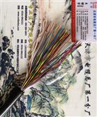 ZRC-HYA大对数电缆