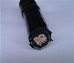 ZR-DJYPVRP屏蔽计算机电缆 12*2*1.0