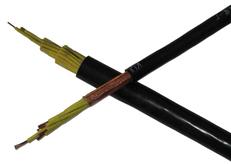 450/750V铜丝编织屏蔽电缆KVVP4×1.5