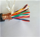 DJFPVP耐高温计算机电缆