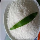 聚丙烯酰胺实验流程