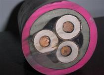 3×41×2.5YCW野外用橡胶电缆