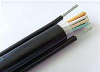 PTYV 14芯铁路信号电缆价格