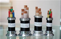 YJLV 铜芯交联聚氯乙烯绝缘护套电力电缆