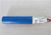 铠装计算机电缆-DJYVP22
