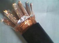 耐高温计算机电缆NH-DJFPVP价格