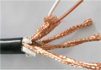 计算机电缆DJYP2V-5×2×1.0