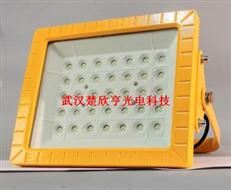 紫光GB8040-L60W 防爆LED泛光燈GB8040LED防爆燈同款