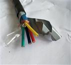耐火控制电缆NH—KVVP2