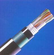 10*2*0.6-铠装阻燃电话电缆HYV22价格