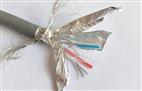 RS485-22-2*0.75鎧裝電線電纜