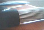 MKVVP-7×1.5㎜2矿用控制电缆价格